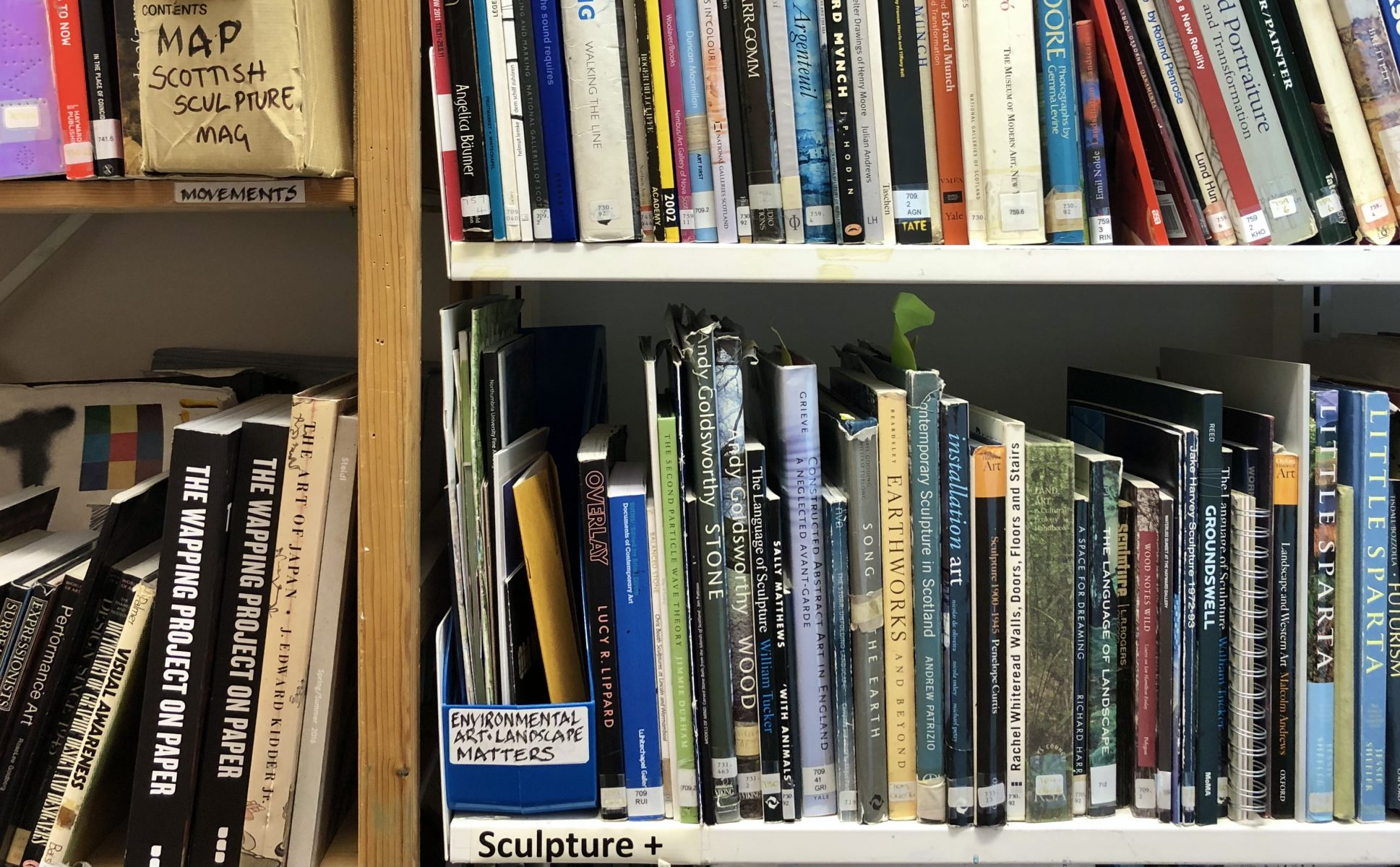 A cropped view of shelves of art books.